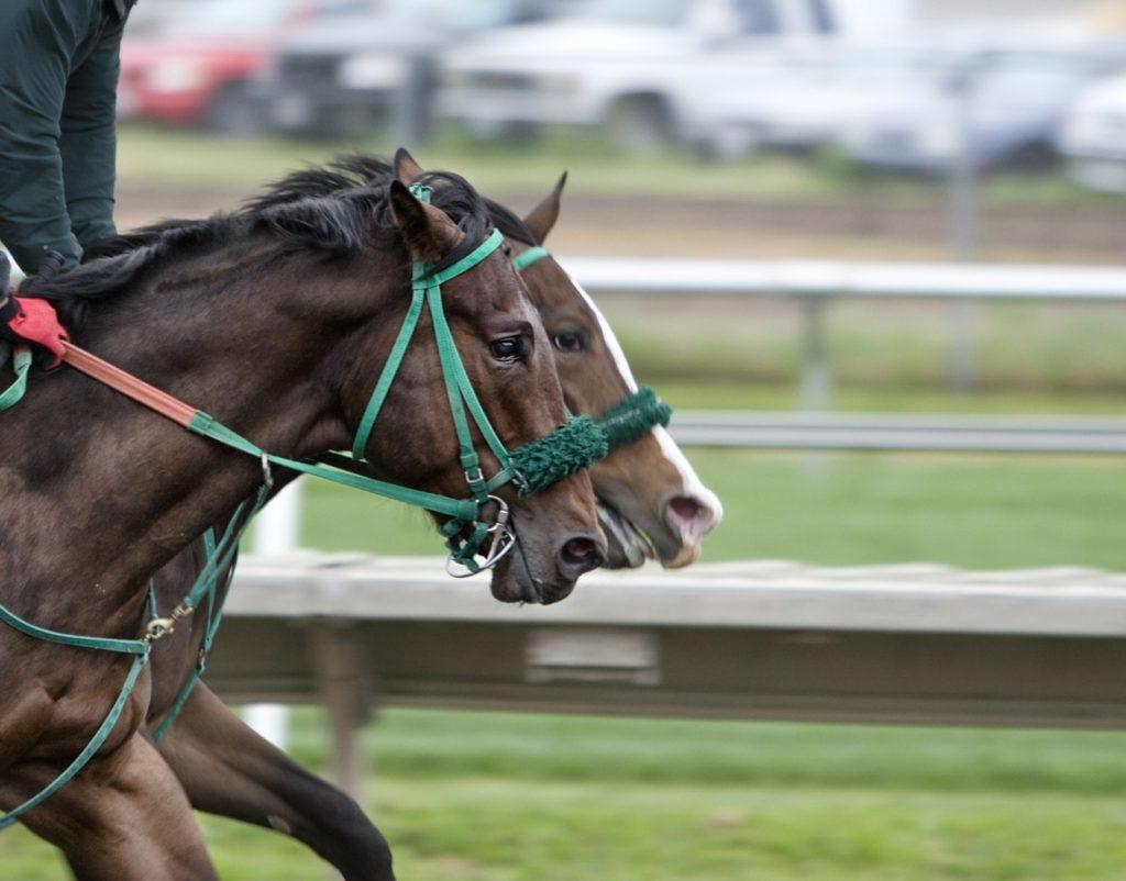ディープインパクトが早い理由を考えてみた!強い競走馬の走り方とは?