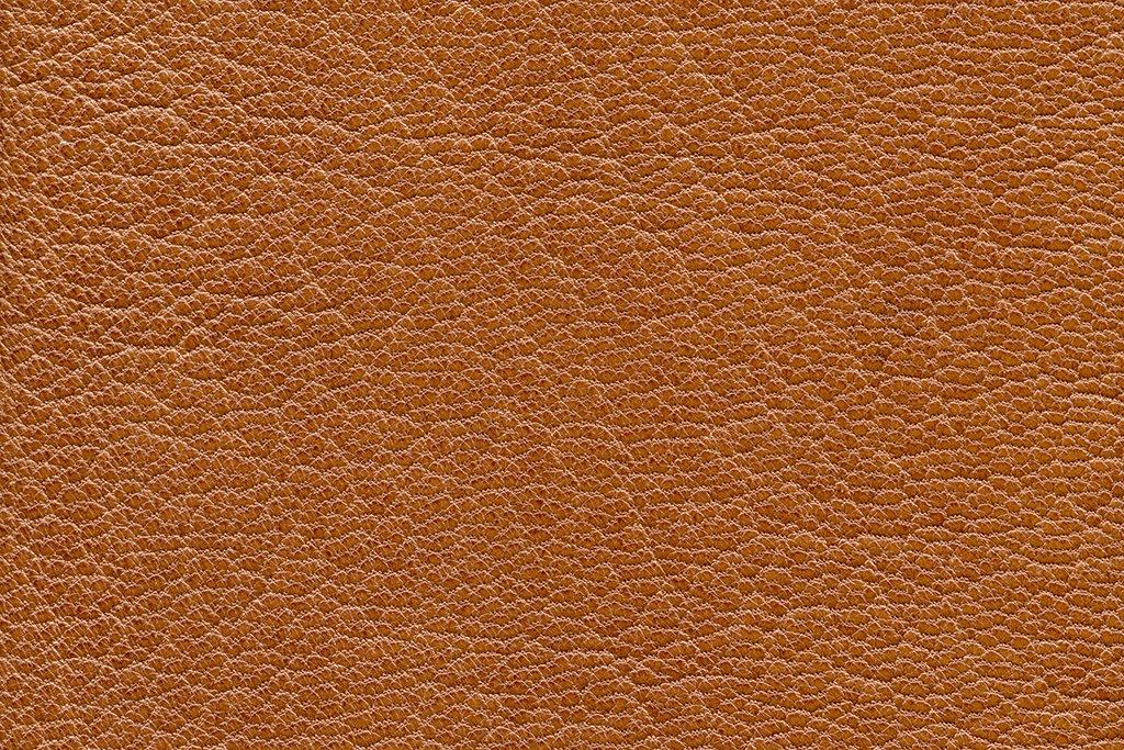 皮と革 天然皮革と合成皮革の違いって何?